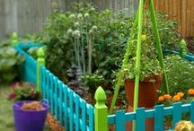 Gardening / I dream of one day having a large garden at my summer home...until then I'll pin.