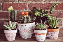 crafts // potted plants / by Lauren Taylor Made