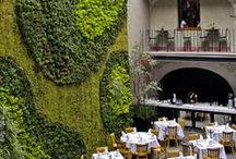 Balcony + garden / by Kerry W (née M)