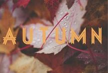 Seasonal Inspiration: Autumn  / I love and hate autumn at the same time....