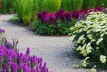 Garden: Flowers and Landscape Ideas / by Jessica