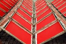 Color ❉ Red, Rouge, Rojo  / by Jackie Jordan