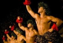 Hawaii Art, Food and Culture
