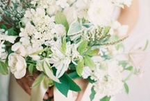 Wedding photography / Ideas for wedding pict / by Adelitas Jewelry