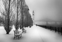 Montreal / by Rae Caldas