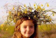 Wild Flower Creativity