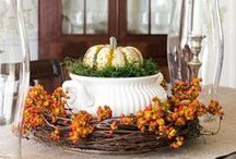 SEASON | Fall / DIY ideas and inspiration to bring a touch of Fall into my home...and yours too!
