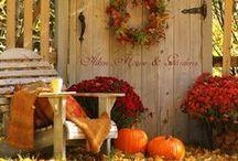 Fall / by Abbey Bonham