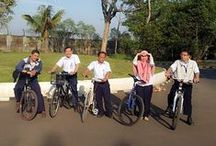 Bicycle / Activity in bicycle community