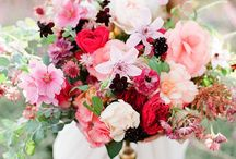 FLORALS / beautiful blooms