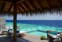 Accommodation / At Dusit Thani Maldives, the elegance of contemporary Thai interiors is integrated with traditional Maldivian architecture. One hundred villas and residences each offer a haven of modern sophistication with luxurious amenities and technology.