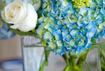 Wedding Ideas / by Kelly Evenson