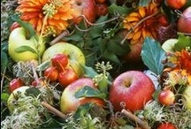 Fall Wreaths and Decorations / by Teresa Powell