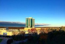 Enjoy the View / Enjoy the stunning scenery that is the backdrop of Foxwoods Resort Casino.
