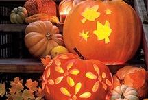 All Things Fall & Pumpkins / by Virginia Cortés