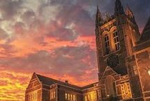 Boston College / by Colleen Richardson