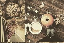 Falling for Fall / Fall flavors, colors, & inspiration