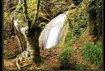"""05  Nacedero Río Urederra Baquedano Navarra  el """"Paraíso del Agua"""" / La Cascada del Elefante en el Nacedero del Río Urederra  Pertenece al Parque Natural Urbasa en la Comarca Turística de Urbasa Estella. El http://topsy.com/s?q=%23NacederoUrederra es un paraje mágico llamado """"El Paraíso del Agua"""" @NacederUrederra http://nacedero-rio-urederra.blogspot.com/ http://www.casaruralnavarra-urbasaurederra.com/ https://twitter.com/NacederUrederra / by Casa Rural Urbasa Urederra"""