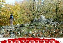 40  Paisajes y Artesanos  del  #TurismoRural de  #NavarraNaturalmente / Una nuestra singular de los Paisajes Naturalisticos que tiene el   #TurismoNavarra   que ofrecen las mejores opciones del #TurismoRural