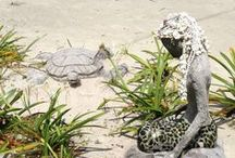 Travel to Grand Cayman / Grand Cayman is the largest of three islands that make up the Cayman Islands in the Caribbean