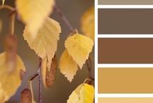 Color My World / Paint colors!