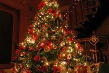 O Christmas Tree :) / by Cheryl Storozyszyn