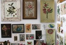 Decorating with Botanical Art