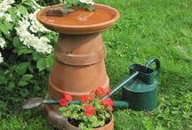Clay pots / by Micki Rau