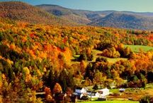 This Is Our Berkshires