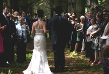 Pine Tree Wedding Ceremony / by Perona Farms
