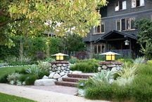 Lincoln Garden / Plantings / by Leslie Parker