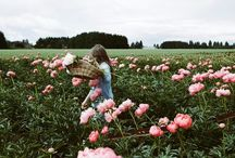 """flowergirls— / """"Every flower is a soul blossoming in nature."""""""