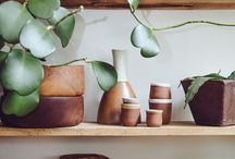 """home • plants– / """"My fake plants died because I did not pretend to water them."""""""