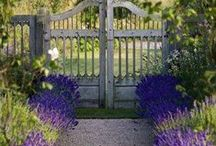 Garden Doors & Gates / They're iron. They're rusty. They lead to beautiful secret places. What's not to love?