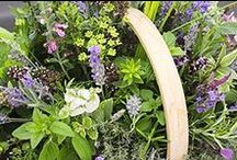 Eco friendly garden / Ideas to inspire new ways to attract wildlife, grow your own food, and garden organically.