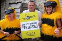 The Bee Cause / British bees are in crisis. But thanks to you, the UK now has a Bee Action Plan, which is a fantastic start! Find out more at www.foe.co.uk/bees