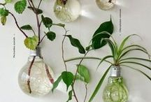 My green home / Inspiring eco-friendly ideas for your home.