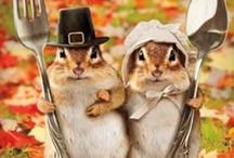 Fall/Halloween/Thanksgiving Ideas / by Christine Aksland Ouzts
