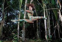 Amazonia/ Amazonie / Amazon Rainforest