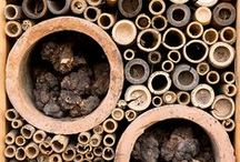 Bee hotels I love by HONEY / Hello! I'm Honey the Bee and here's some of the bee hotels where I like to hang out with my friends. Why not create your own with Friends of the Earth's free guide at www.foe.co.uk/what_we_do/bee_cause_campaign_42035