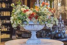Spring Celebration 2016 / The gardens and gallery are brought to life with fresh floral displays to celebrate the beginning of spring.  http://rogersgardens.com/spring-2016/