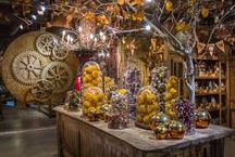 """Halloween Boutique 2016 'Grimm Tales' / Every year our Garden Rooms are transformed by our Visual Merchandisers into a """"Haunted House.""""  """"The forest is dark and enchanted…branches creak and leaves rustle as trees close in, obscuring the path home.  Wander deep into the shadows and you'll find frightful folklores, fantastical stories and chilling tales.  These bedtime stories will give you nightmares, and you'll discover that not all fairy tales end happily-ever-after."""""""