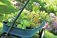 Outdoor Love / Gardening, yard art, and games oh my!