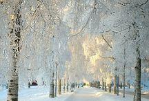 Snowy destinations / by Michele Greene