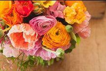 Sarah J Hudson flowers & styling