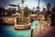 Blogger & Media Love / Stories about The Woodlands Resort & Conference Center by friends in the media and blogging community. If you'd like to see yourself featured here, send us an email at christy@storytellercomm.com / by The Woodlands Resort