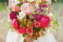 Wedding / by Diana Goodwin