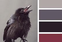 Bird * Gray