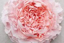 Flores em tecido e papel / Fabric & Paper Flowers