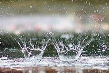Rainy days / by Maria Triana